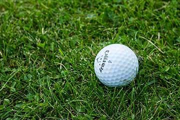 Bild för Bro Hof Slott Golf Club
